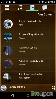 Music Player AnyPlayer Professional 1.0.24
