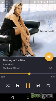 Pulsar Music Player Professional 1.4.3 (Paid Version)