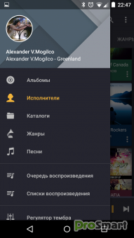 Pulsar Music Player Professional 1.4.6